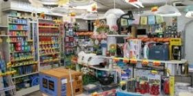 The reason for small individual consumer electronics store is not crushed