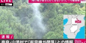 "Nara Prefecture ""aircraft has crashed,"" information with ""Yaro pretty dangerous this"", ""Yaro cedar pollen,"" ""or Raditz has come."""