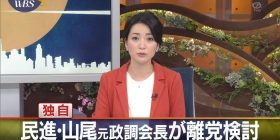 YAMAO Kokorozashisakurasato-chan of the Democratic Progressive Party, wwwwwwwwwwww to leave the party and lawmakers resign