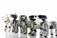 What you are doing is the original engineer uncle in order to repair the [impression] AIBO, which was out of print