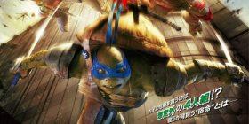 """彡 (°) (°) """"Attsui I wonder, how turtle human teen there is no Toka anime is doing ninja …"""" ( '· ω · `)"""" !!! """""""