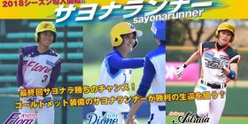 Women's Professional baseball's, introduced the mystery of the system wwwwwww