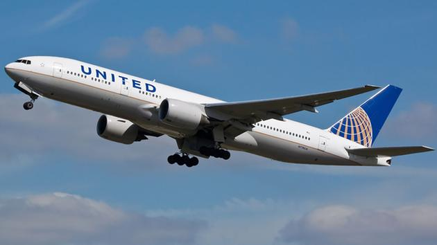United airlines mistakenly flies dog to japan instead of for Best airline to fly dogs