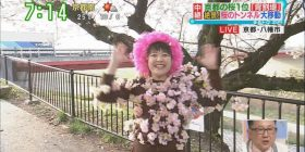 Kansai's popular number one female Anna, you can make it a ridiculous appearance on the program wwwwwww