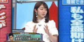 "Minegishi Minami, denial of the theory of ""idol that Yamaguchi Tatsuya had argued"" theory"