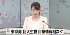 【Godzilla flash report】 Huge creatures in Tokyo Bay, sightings information