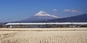 Major shinkansen bullet train service disruption in northern Japan due to bird strike – The Mainichi