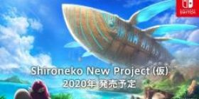 Koropra and Nintendo's collaboration game release decision wwwwww