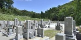 """Danjie """"I would like to grave it"""" Temple """"Yes, 7 million"""""""