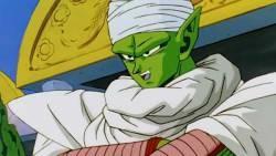 Dragon ball should be prepared for Mr. Piccolo soon