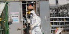 Robot probes radioactive fuel at Japan's quake-hit Fukushima plant – The Straits Times