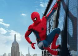 [Image] Spider-netco climbing up the screen door wwwwwwwww