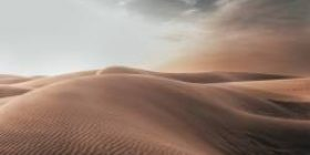 [Sad news] Musashi Kosugi turns into a desert