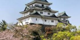[Image] The tallest building in Wakayama is here wwwwwwwww